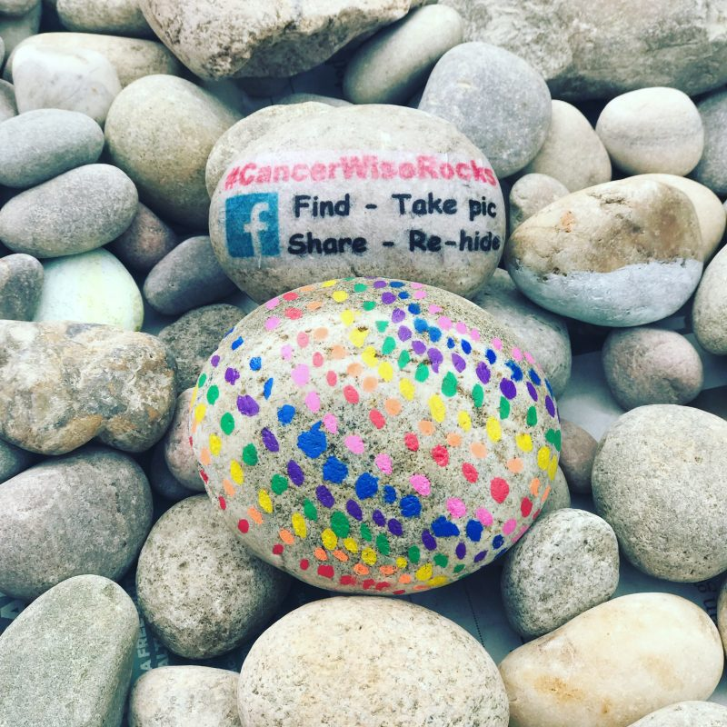 Cancerwise Rocks charity painted stones