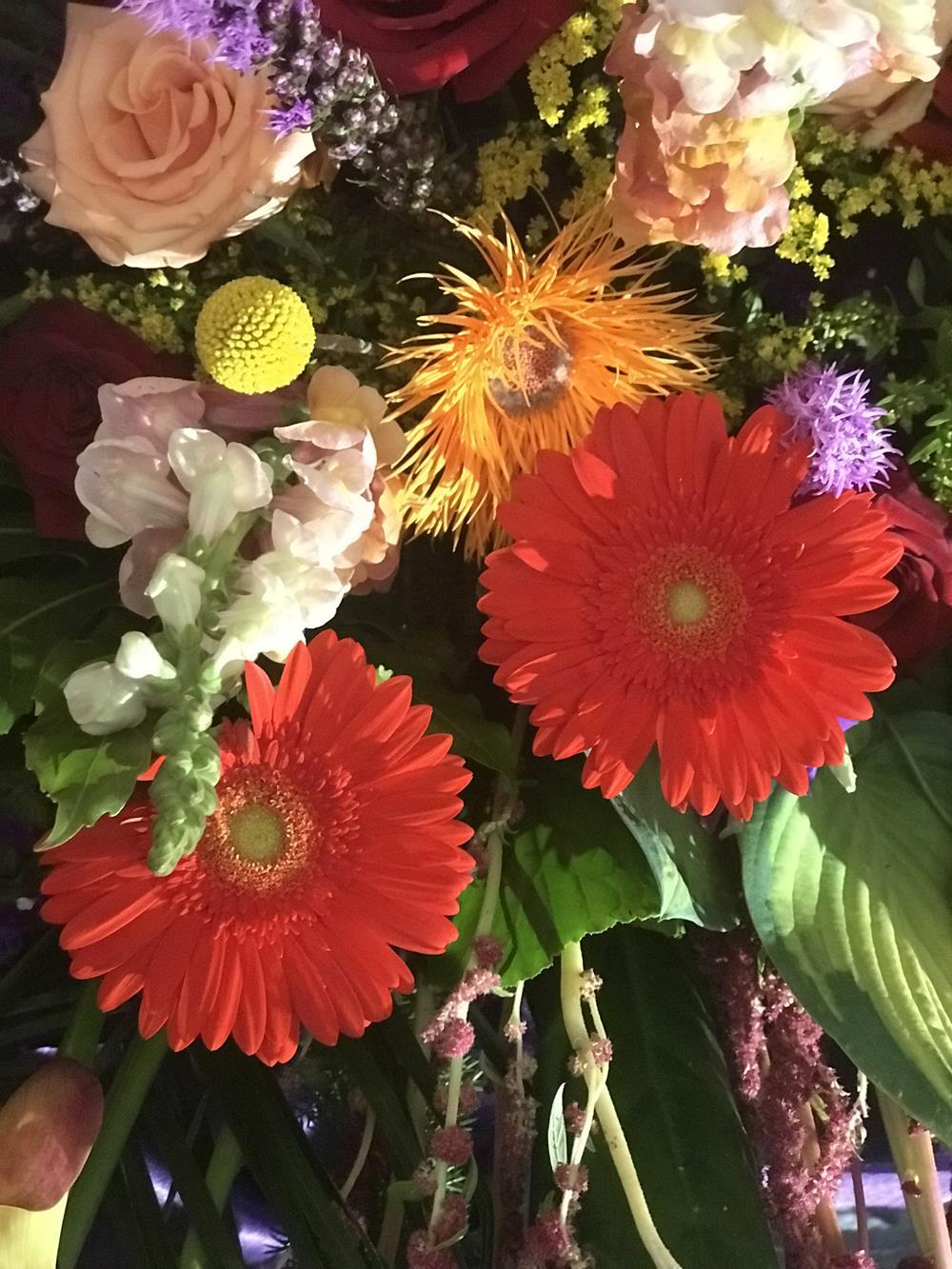 Orange gerberas in floral display