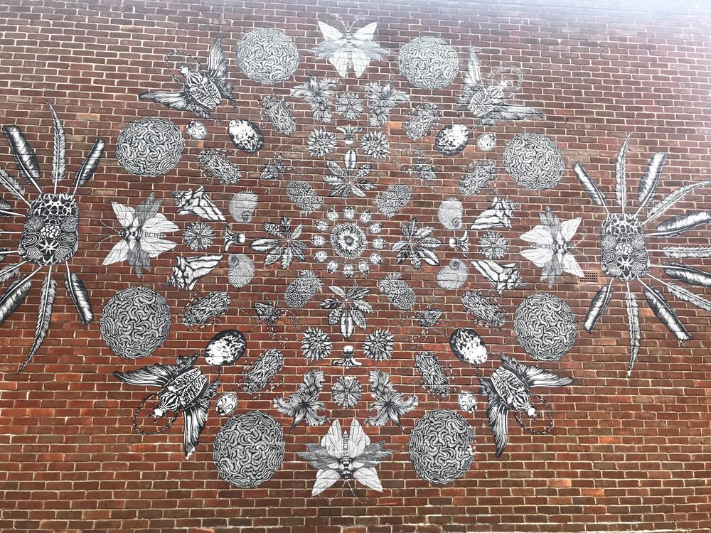 Natural Order paste up street art in Hoxton by Lily Mixe