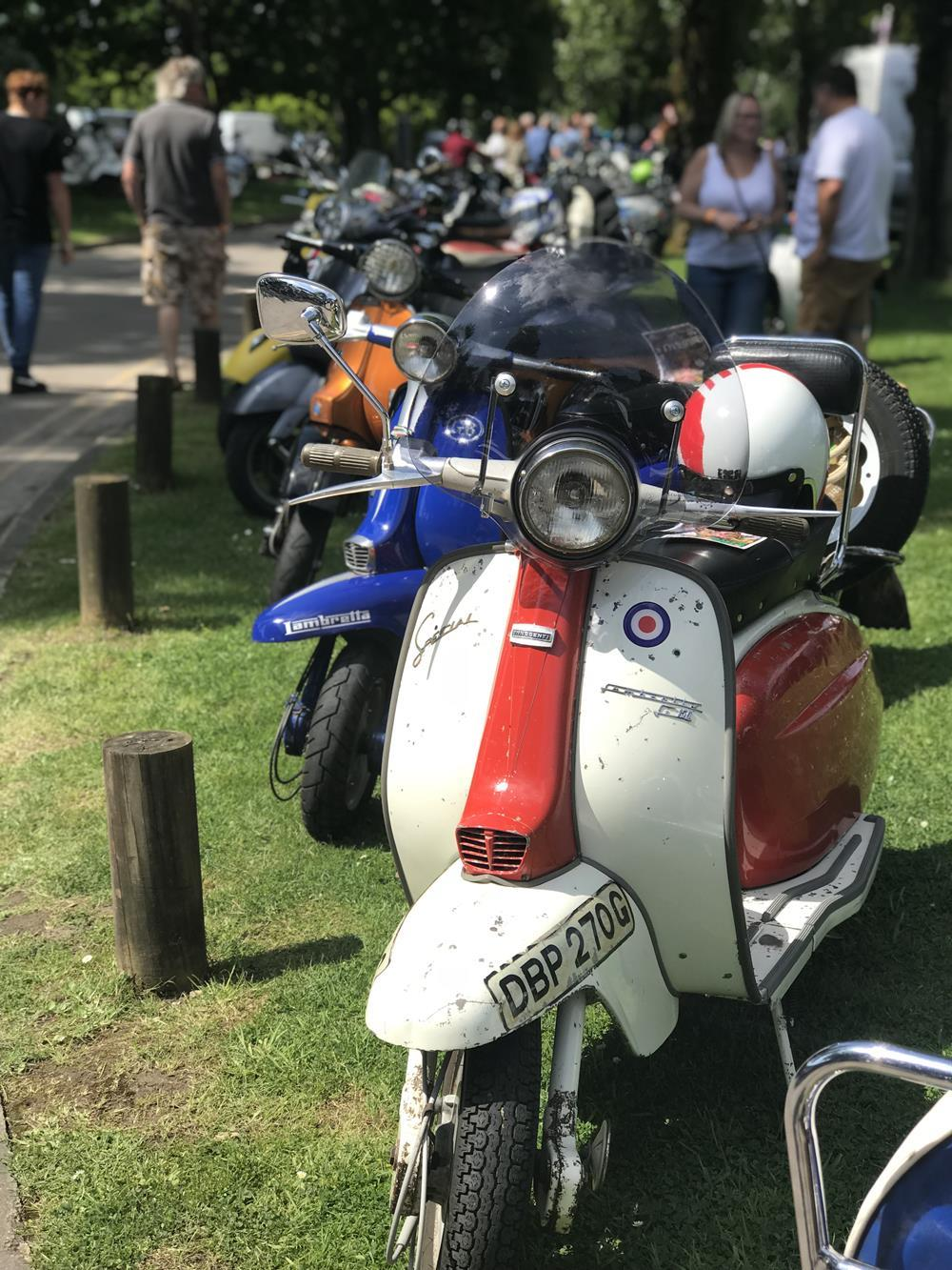 Group of scooters
