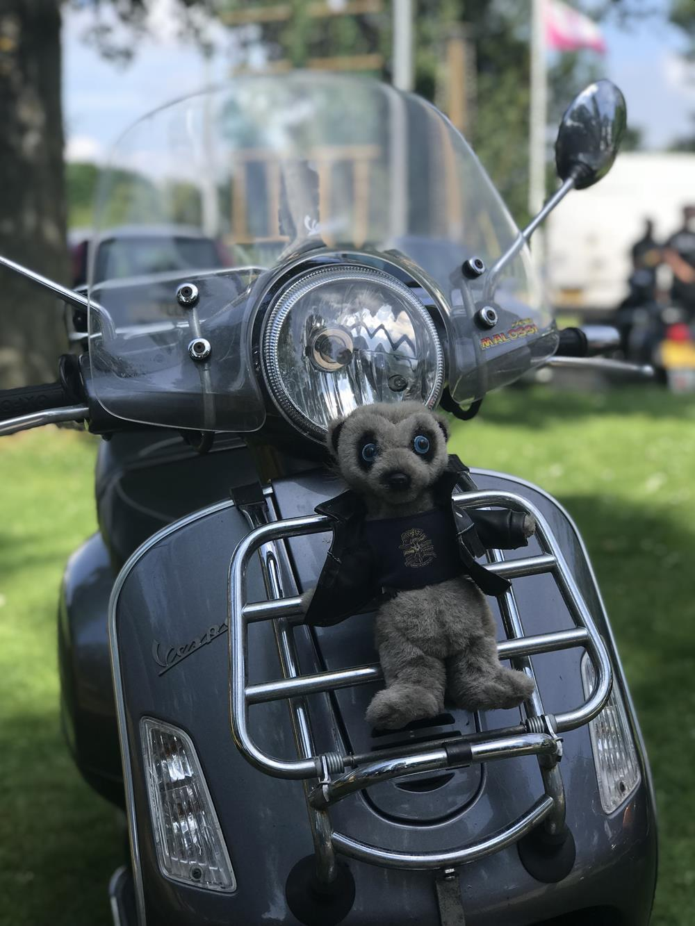 GTS with cuddly meerkat strapped to the front rack
